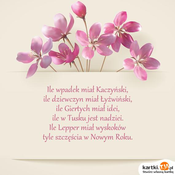 Ile wpadek miał Kaczyński,<br>ile dziewczyn miał Łyżwiński,<br>ile Giertych miał idei,<br>ile w Tusku jest nadziei.<br>Ile Lepper miał wyskoków<br>tyle szczęścia w Nowym Roku.
