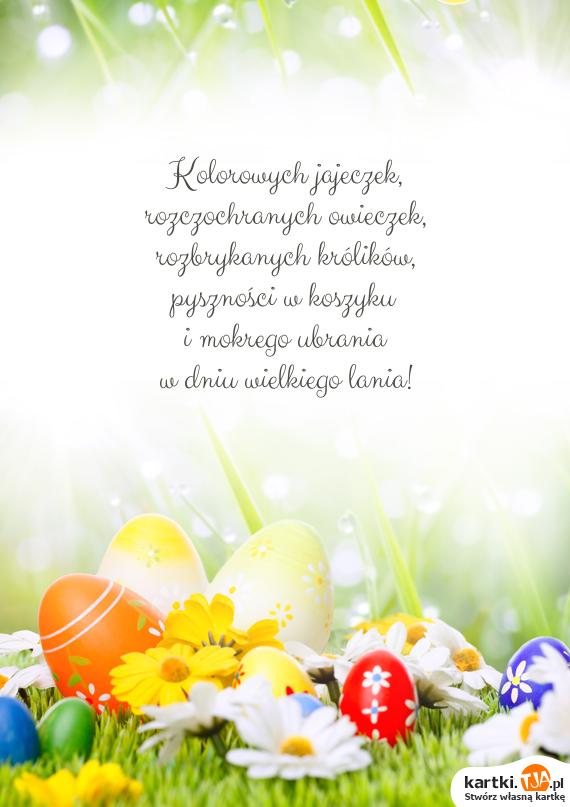 Kolorowych jajeczek,<br>rozczochranych owieczek,<br>rozbrykanych królików,<br>pyszności w koszyku<br>i mokrego ubrania<br>w dniu wielkiego lania!