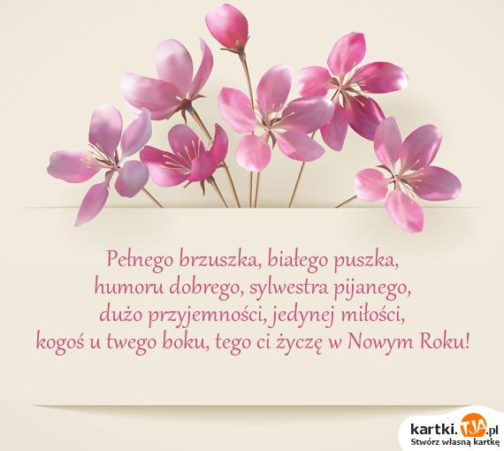 Pełnego brzuszka, białego puszka,<br>humoru dobrego, sylwestra pijanego,<br>dużo przyjemności, jedynej <a href=http://zyczenia.tja.pl/milosne title=miłości>miłości</a>,<br>kogoś u twego boku, tego ci życzę w Nowym Roku!