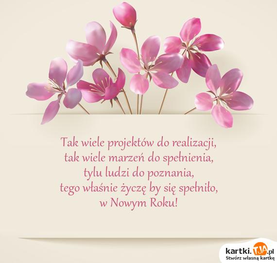 Tak wiele projektów do realizacji,<br>tak wiele marzeń do spełnienia,<br>tylu ludzi do poznania,<br>tego właśnie życzę by się spełniło,<br>w Nowym Roku!