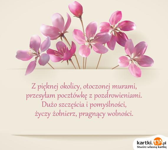 Z pięknej okolicy, otoczonej murami,<br>przesyłam pocztówkę z pozdrowieniami.<br>Dużo szczęścia i pomyślności,<br>życzy <a href=http://zyczenia.tja.pl/dla-wojakow title=żołnierz>żołnierz</a>, pragnący wolności.